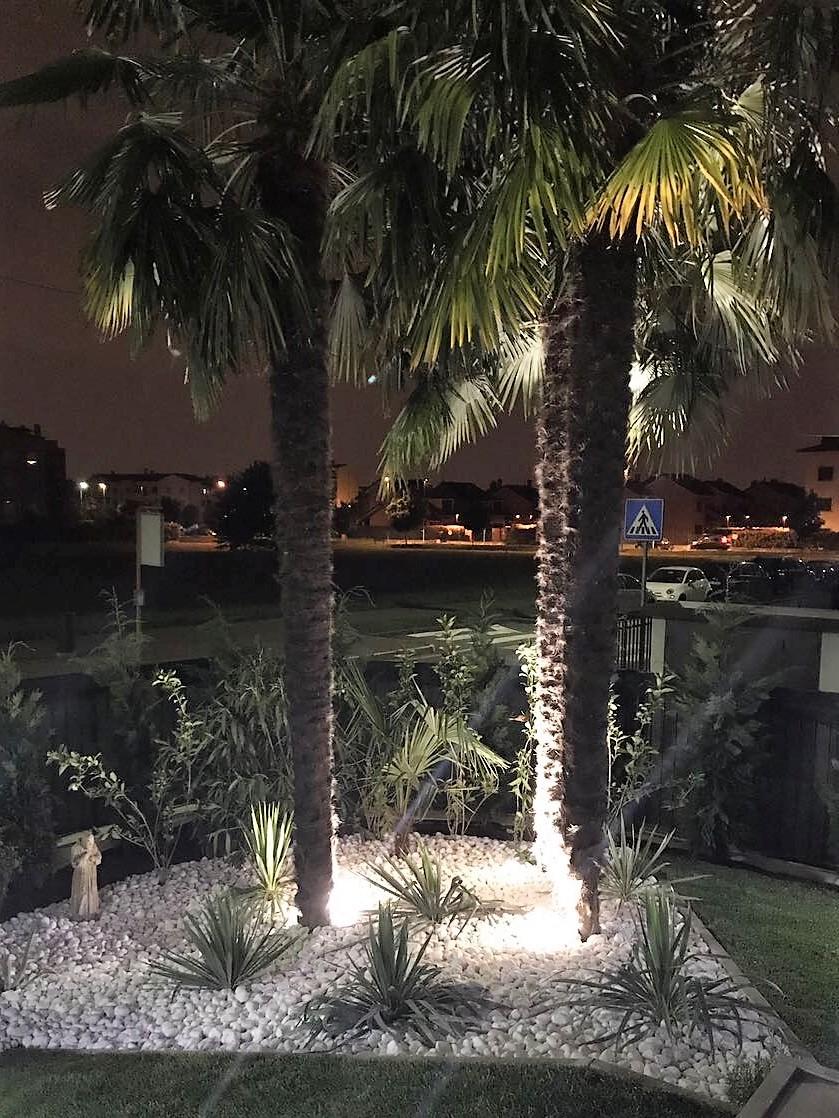 Faretti Led a picchetto illuminazione palme giardino