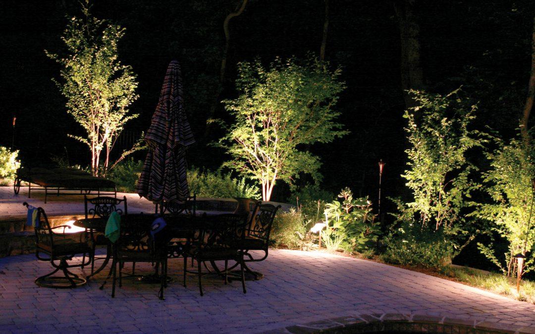 La guida sulle luci artificiali per la coltivazione della