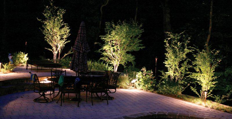 Illuminazione piante giardino parco del contemporaneo